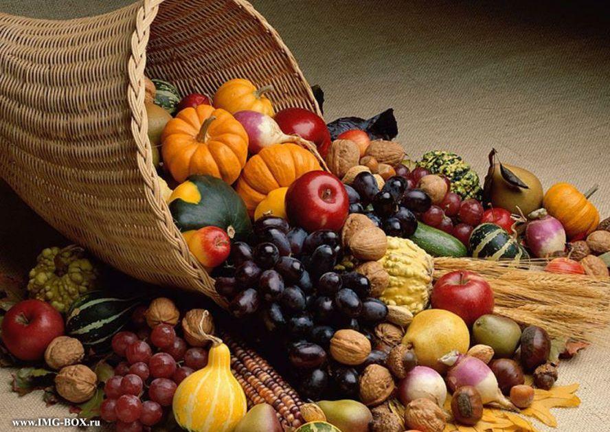 День Осеннего Равноденствия. Рекомендации от Деи. - Тридевятое Царство