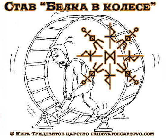 Порча Белка в колесе
