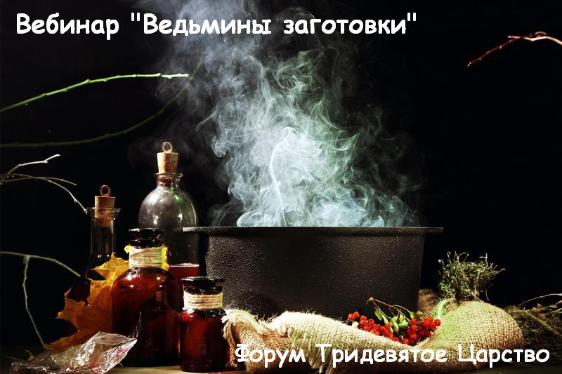 """Вебинар """"Ведьмины заготовки"""" - Тридевятое Царство"""