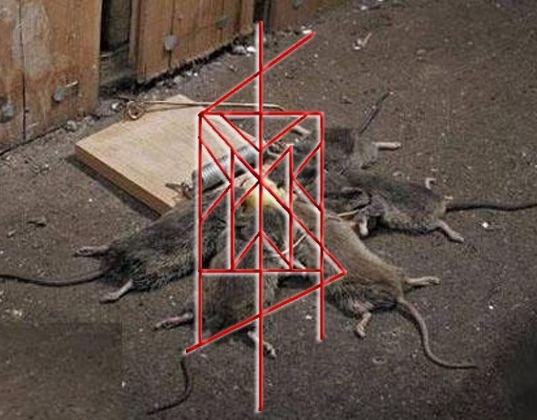 Формула Крыса - Тридевятое Царство