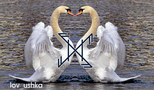 Лебединая верность - Тридевятое Царство
