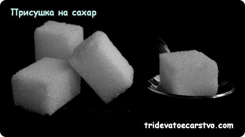 Присушка на сахар