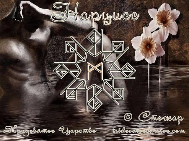 Руническая порча Нарцисс